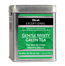 Gentle-Minty-Green