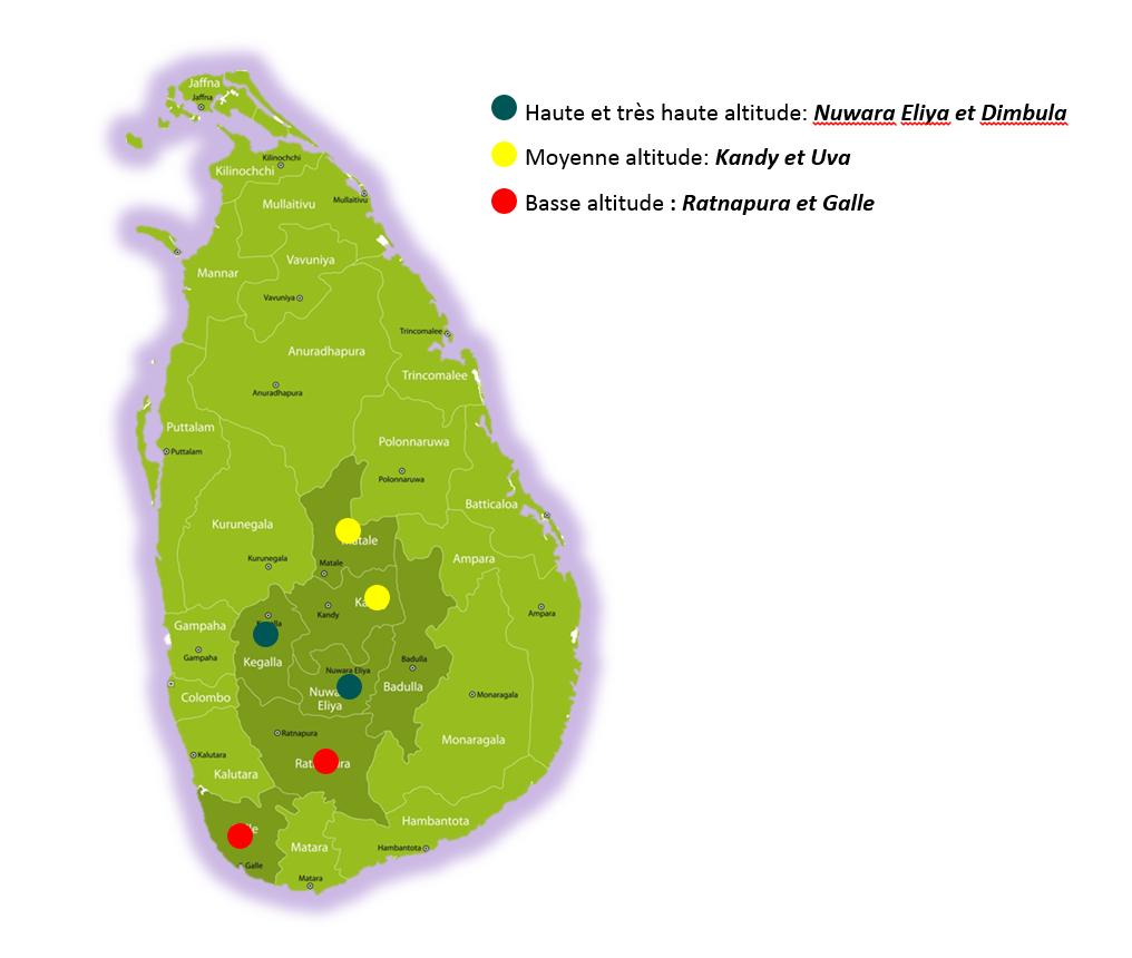 Carte régions thé Sri Lanka Ceylan