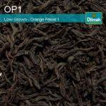 Grade de thé - Orange Pekoe